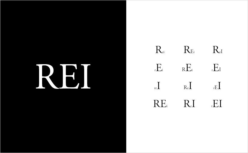 Družba skozi teorijo REI – UVOD